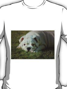 ~Please?~ T-Shirt