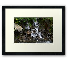 Creek near Alma, Colorado Framed Print