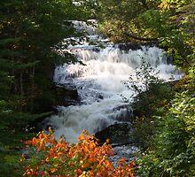 Raleigh Falls by Teresa Zieba