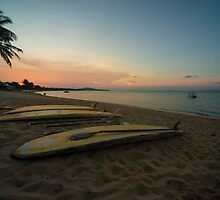 Paddle board twylight  by Rob Hawkins