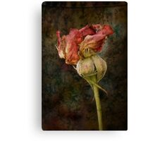 Rust n Roses ~ #13 Canvas Print