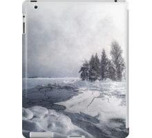Winter & Ice iPad Case/Skin