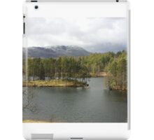 Tarn Hows Tree Scene iPad Case/Skin