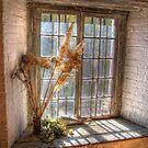 Old Goulburn Brewery Window by Rod Kashubin