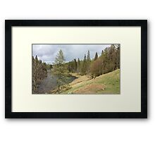View of Tarn Hows Lake District Framed Print