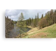 View of Tarn Hows Lake District Canvas Print