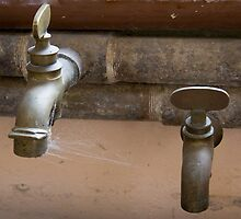 Old Taps  by Pauline Tims