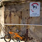 Toy Bike by Ben Herman