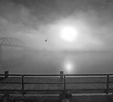 Misty, misty morning - Fog at sunrise over the River Murray at Murray Bridge by Mark Richards