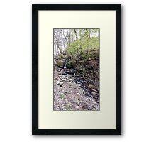 Stream Tarn Hows Framed Print