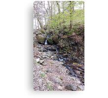 Stream Tarn Hows Canvas Print