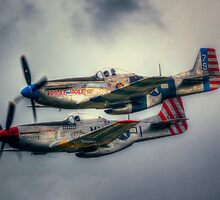 North American P-51 Mustangs by Nigel Bangert