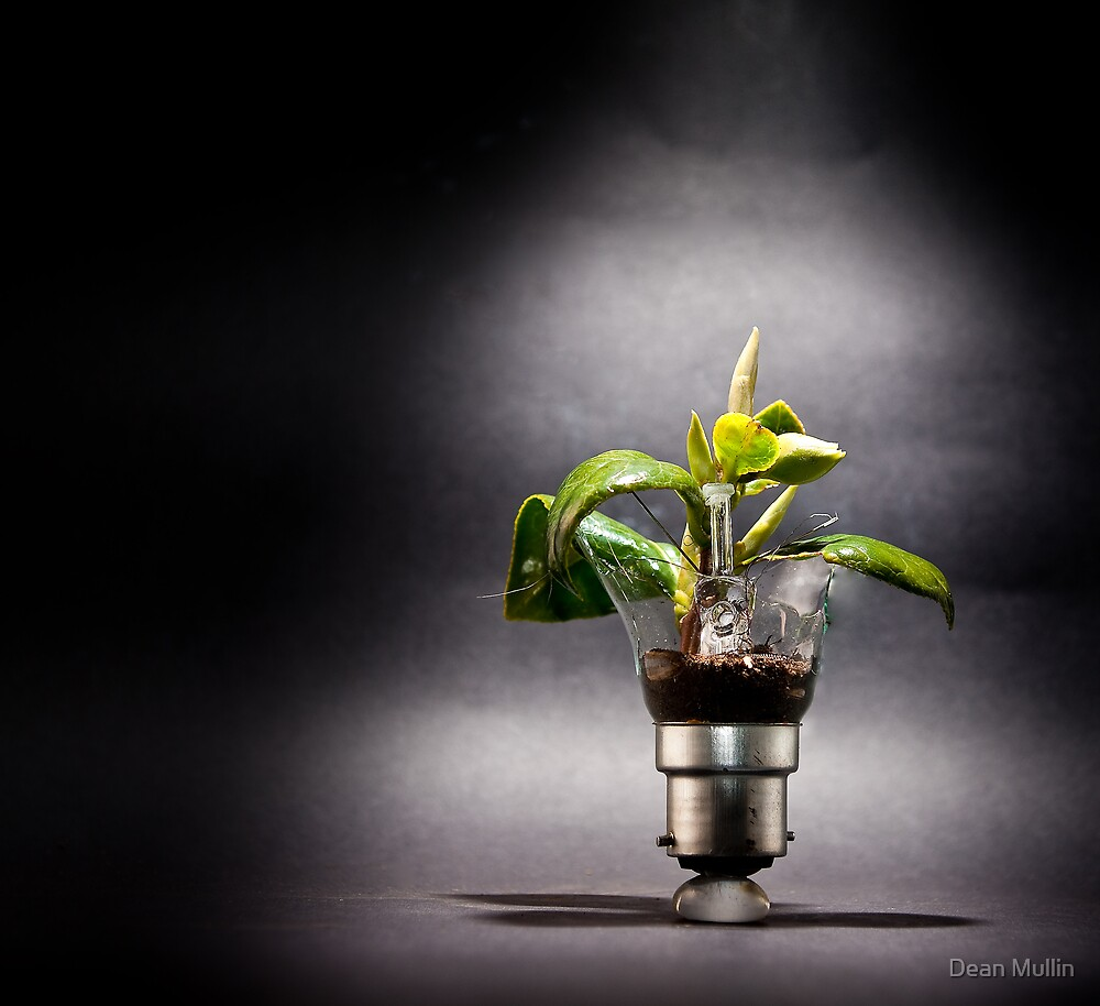 incandescent growth by Dean Mullin