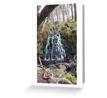 Water Fall Greeting Card