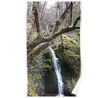 Waterfall Scene Slide Poster