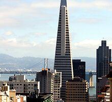 The Transamerica Pyramid, San Francisco by JonathaninBali