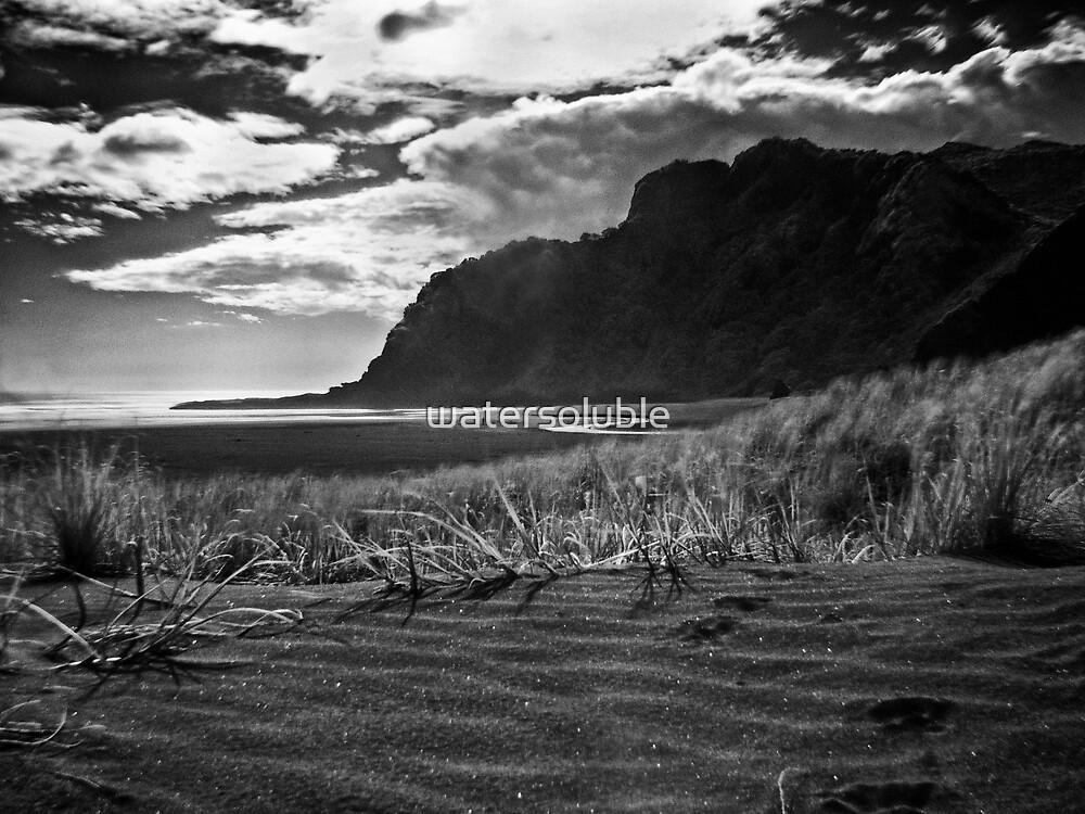 lone figure on Karekare Beach by dennis william gaylor