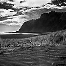 lone figure on Karekare Beach by dennis william gaylor