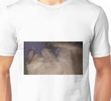 Gabriel Siamese Cat Curl Unisex T-Shirt