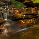 Somersby Falls....well part of it by Jason Ruth