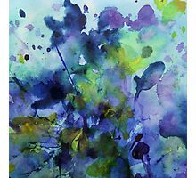watercolor in purple and green Photographic Print