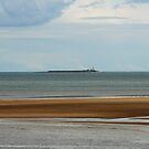 Coquet Island by Stormswept
