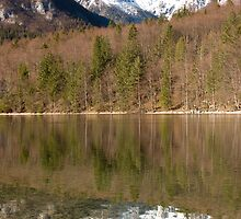 Bohinj Lake, Slovenia by Ian Middleton