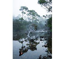 Tea Tee 3 Photographic Print