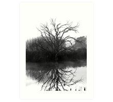 """""""Blackstone Tree"""" B@W Art Print"""