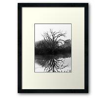 """""""Blackstone Tree"""" B@W Framed Print"""