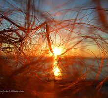 Sunset In My Hair | Pond Point, New York  by © Sophie W. Smith