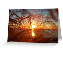 Sunset In My Hair | Pond Point, New York  Greeting Card