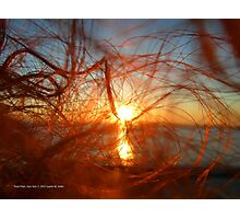 Sunset In My Hair   Pond Point, New York  Photographic Print