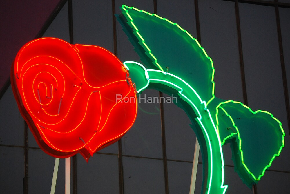 Neon Rose by Ron Hannah
