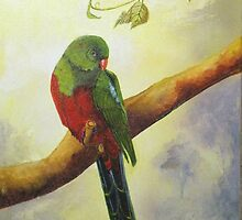 King Parrot,  Killarney country Qld Australia. by Sandra  Sengstock-Miller