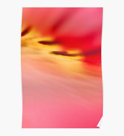 Alstromeria abstract Poster
