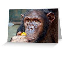 Chimp Mother Greeting Card