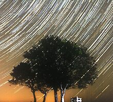 Tress and star trails by Mark Hobbs