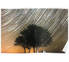 Tress and star trails Poster