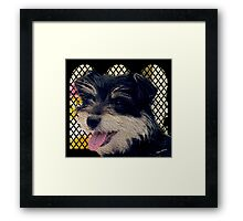 Millie. A very special friend. Framed Print