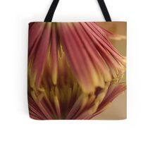 Multi- Colored Reflections Tote Bag