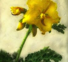 Little Yellow Wildflowers 1 Low-Key by Christopher Johnson