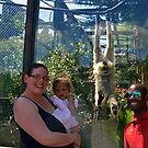 Family Day Out at Monkey World, Dorset UK by lynn carter