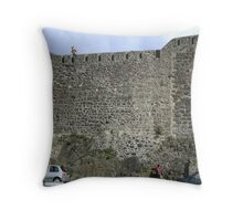 Don't shoot the tourists ...we need the money!! Throw Pillow