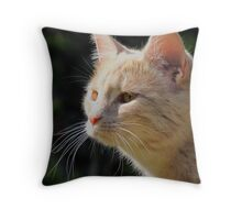 Ginger Toffy Throw Pillow