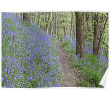 A Carpet of Lilac Poster