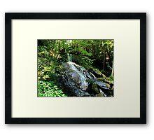Bear Creek Falls Framed Print