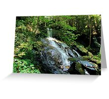 Bear Creek Falls Greeting Card