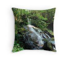 Bear Creek Falls Throw Pillow