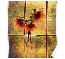 Sunflowers in September Poster